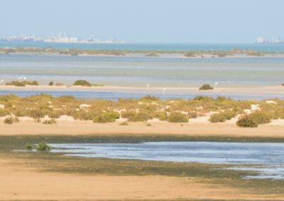 Explore Lassarga Dakhla Atlantic Excursions Palais Touareg Hotel Accommodation Ad-Dakhla