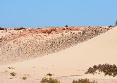 Découvrir le désert Excursions Must Touareg Hôtel Palais Touareg hébergement Ad-Dakhla