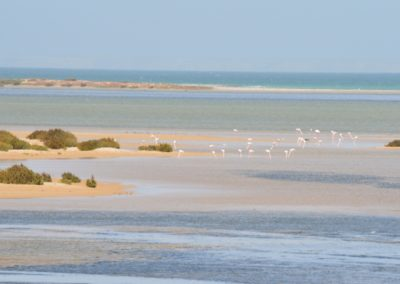 Explore Dakhla Atlantic Touareg Excursion Palais Touareg Hotel accommodation Ad-Dakhla